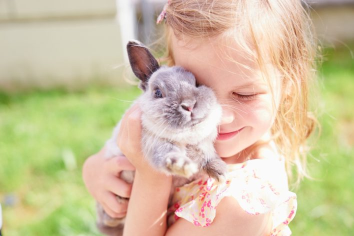 having a bunny as a pet